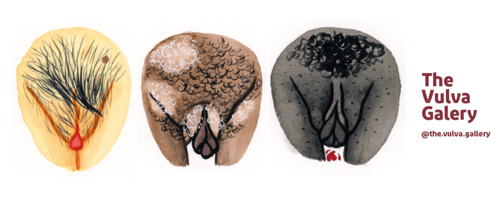 diversidade da vulva