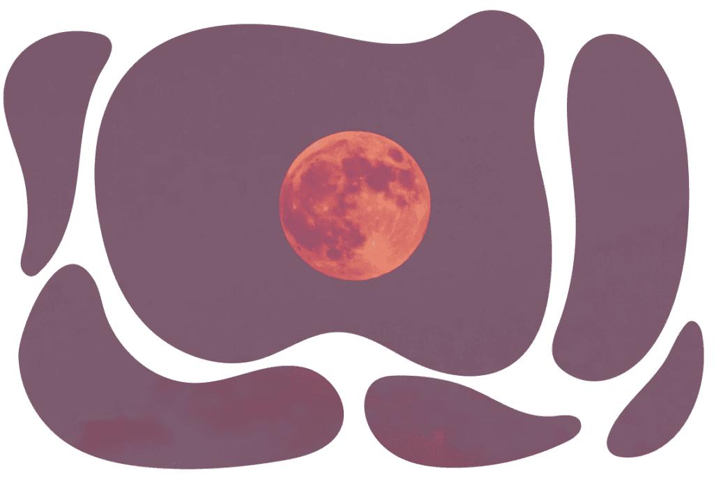 menstruação lunação ciclo menstrual fases